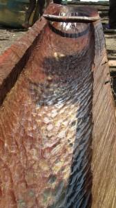 Le bois est travaillé à la hache, en pleine forêt avant d'être ramené au village.