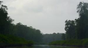 La rivière Kaw
